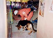 災害救助犬育成事業