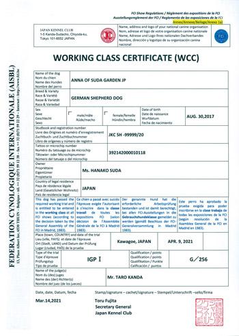 WCC(ワーキング・クラス・サティフィケイト)のイメージ