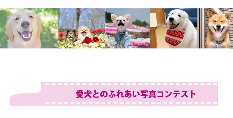 愛犬とのふれあい写真コンテスト 入賞結果発表!!