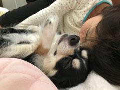 「幸せの寝顔」吉田 雅代