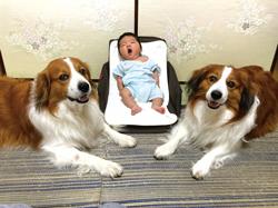 「家族写真」小向 彩さん