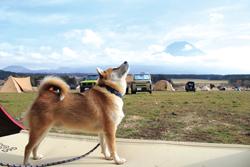 「富士山と背比べ」大橋 由美さん