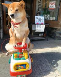 「交通安全」スズキ ナツミさん